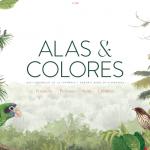 Alas y Colores: una guía para salir ahora a apreciar las aves del entorno