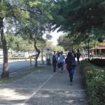 Fracasa negociación para levantar paro de profesores en la UASD