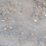 Intec informa sobre estudios arqueológicos de enterramientos indígenas en Valverde