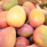 Baní concluye su feria con sabor a mango