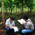 Becas para maestrías en temas agrícolas y de medio ambiente