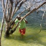 Investigación del Intec advierte ineficacia en la administración de áreas protegidas