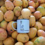 Elogio del mango, esa fruta grata