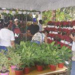 Inicia el Festival de Plantas y Flores 2019 en el Jardín Botánico